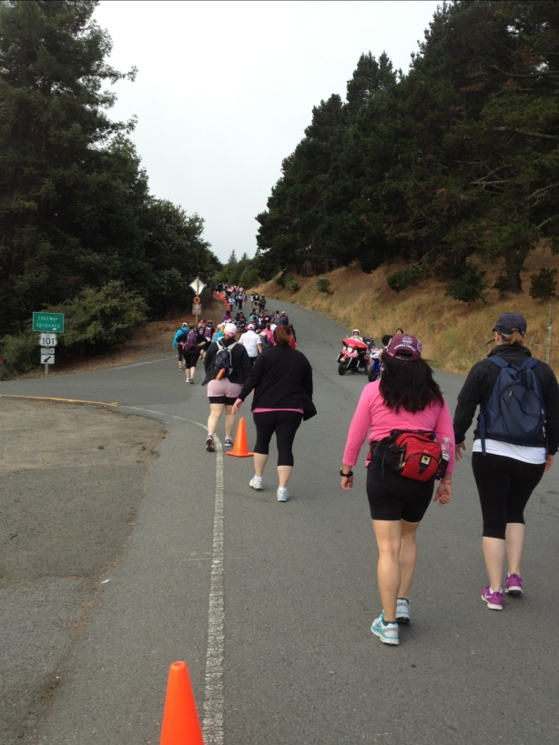 A strong sense of togetherness, trekking 39.3 miles for the fight against breast cancer